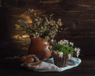 *** натюрморт верба свет весна