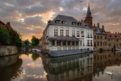 Утро в Брюгге Брюгге Бельгия восход лебедь путешествие отпуск