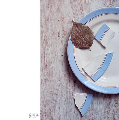 февраль приготовил десерт... сухой лист осколки тарелка февраль