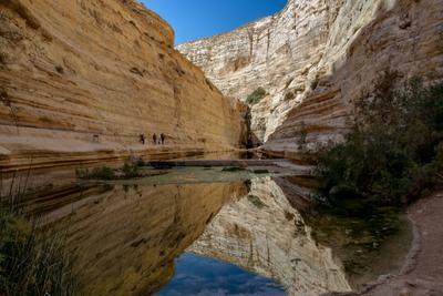 Эйн-Авдат 1 Пейзаж источник озеро каньон горы ущелье Израиль пустыня Негев