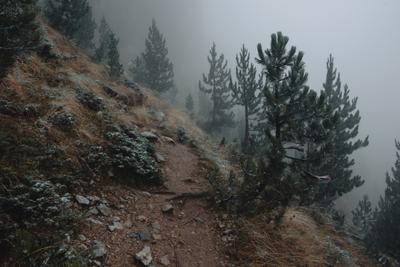 Туманная тропа нац. парка Проклетие