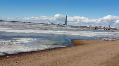 Апрельский Финский залив Санкт-Петербург апрель финский залив 2021
