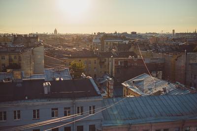 Сны Петербурга Санкт-Петербург крыши