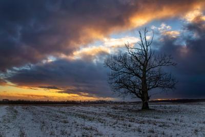 Редкий закат нынешней зимы