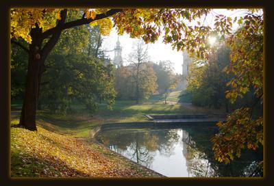 утро Дрезден парк утро осень