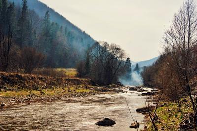 Горные реки Карпат горы река пейзаж