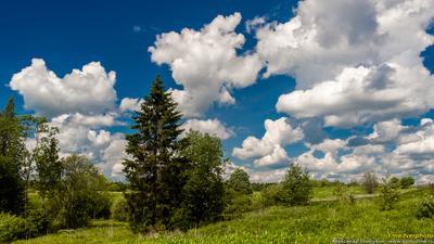 На Валдайской возвышенности исток волги тверская область лето облака