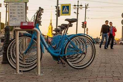 И все-таки лето возможно велосипед санкт-петербург питер петропавловка стрелка васильевского острова