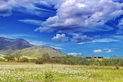 Затерялся домик меж холмов сопки растения поле пастораль облака небо