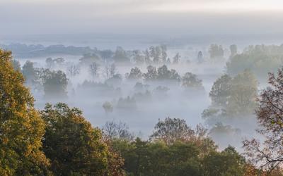 Синий туман туман синий пейзаж природа над речкой рассвет раннее утро подмосковье
