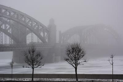 Туман опустился на час Петербург туман Большеохтинский мост Петра Великого