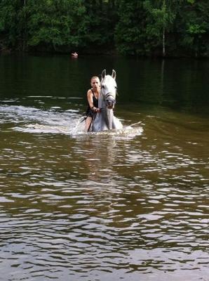 ***купание с лошадью Хорошие фото