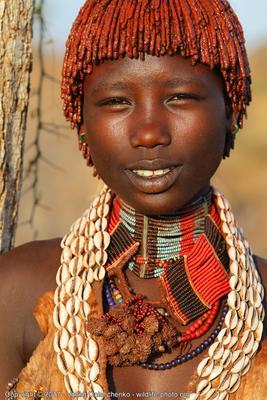 Девушка из племени Хамер эфиопия хамер девушка
