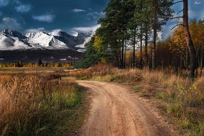 *** пейзаж осень