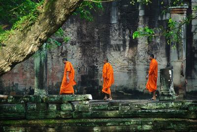 *** Камбоджа. Ангкор. Монахи.