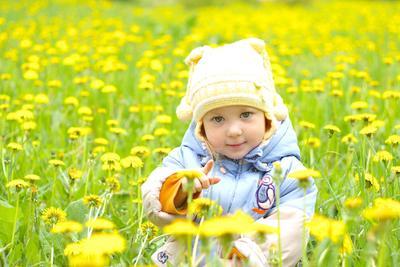 В море одуванчиков цветы дети