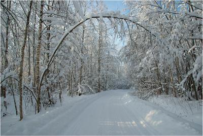 Зимняя дорога Дорога зима снег