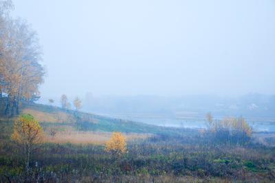 Туманное утро калужской губернии