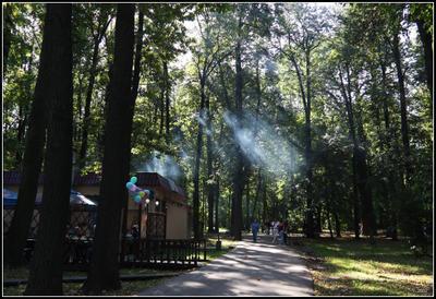 Запах шашлыка парк, шашлык, дым