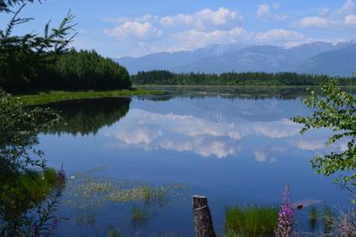 Таежное озеро. Тайга озеро жара