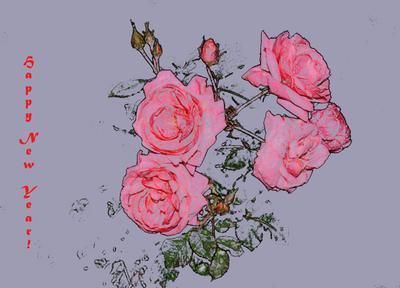 Декабрьские розы розы обработка в фотошопе