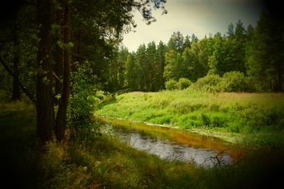 Тихое место Природа