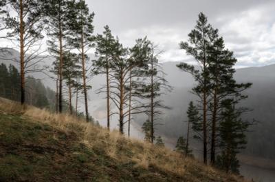 Дождь прошёл стороной. Мана склон дождь непогода Красноярский край