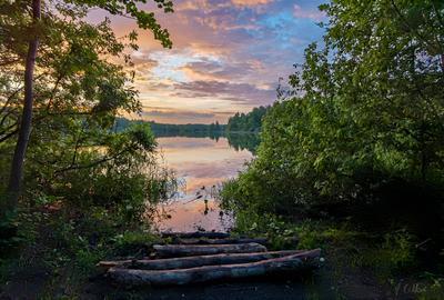 *** озеро вечер закат тучи облака берег трава лес бревна