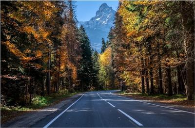 Осенняя дорога в Домбай Горы Домбай Главный Кавказский хребет вершина осень дорога.лес
