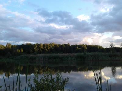 рассвет Россия Москва Московская область пейзаж озеро рыбалка восход отдых красота рассвет