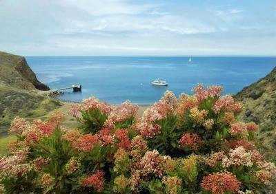 На острове Санта Круз