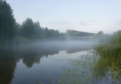 Река и туман туман утро река рассвет