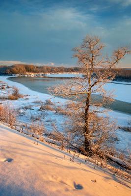 *** Дон Вёшенская зима январь