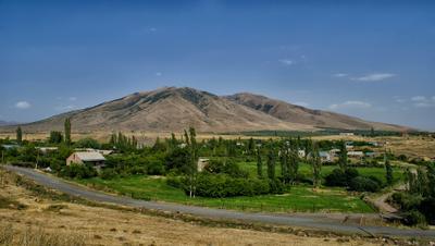Есть душа в той далекой стране Армения тополя деревня деревья лето жара автобус