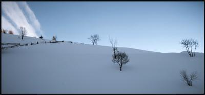 Снежная тишина зима снег тишина