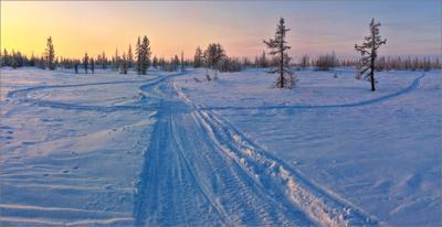 В лучах февральского заката...(2) февральская закатная ЯНАО Новый Уренгой