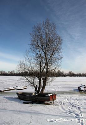 Январь зима дерево лёд река лодка январь