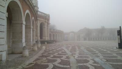 Туманным утром