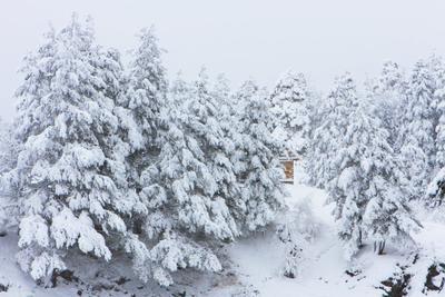 Снег в Архызе снег Архыз горы