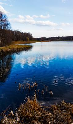 Весна на озере Измайловский лес
