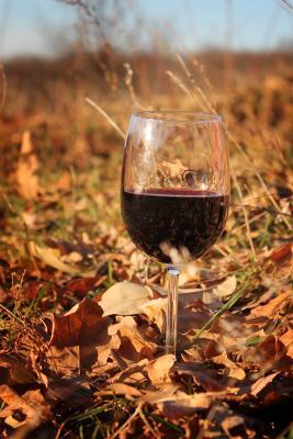 Хмельная осень вино, бокал, осень, листья, шорох, хмель, алкоголь