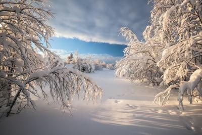 Красота Русской зимы... Зима Закат Кольский полуостров Север Мурманская область