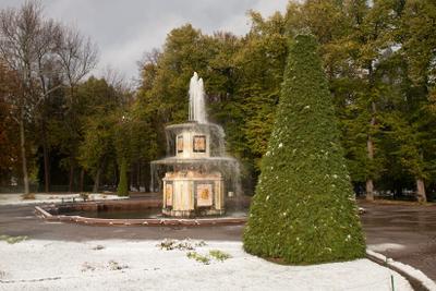 Первый снег Петергоф фонтаны золотая осень снегопад
