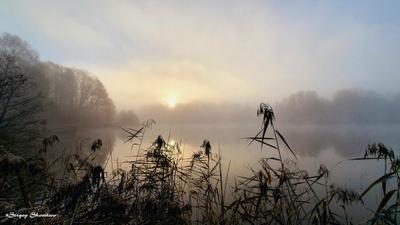 Туман над озером Осень туман озеро восход солнца