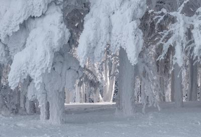 Сказка Морозко! Енисей мороз -40