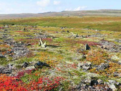 Тундра острова Кильдин Баренцево море остров тундра камни Кильдин