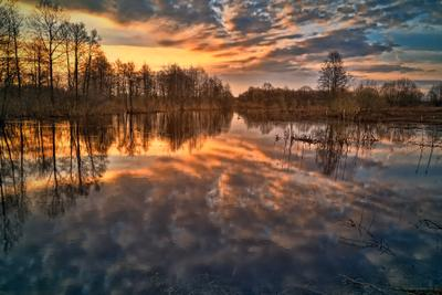 Рассвет Утро рассвет весна река Тверская область
