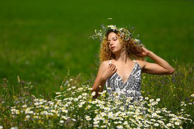 воспоминания о лете лето поле цветы солнце