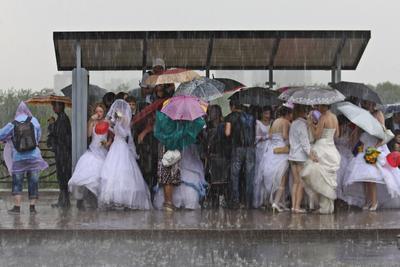 Ноев ковчег дождь