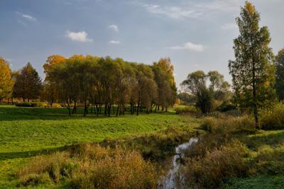 Муринский парк СПб парк осень